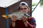 Néptáncosok Népzenészek és Barátaik Országos Horgászversenye - Fotó: Mucsi Gyula