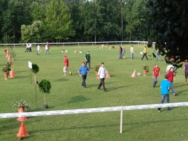 II. Amatőr Fogathajtó verseny - Fotó: Jászberény Online / Suba Bea