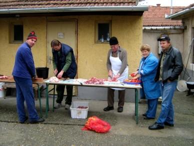 01-Szent Vendel napot ünnepeltek a gazdák - Fotó: Jászberény Online