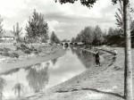 A Zagyva városi ága az Alkotmány úti kőhíddal - 1959. május